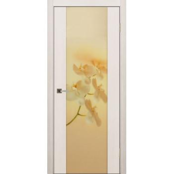 Межкомнатная дверь ДО Континенталь 1